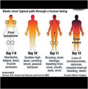 Ebola07